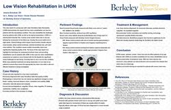 Low Vision Rehabilitation in a Case of Leber Hereditary Optic Neuropathy