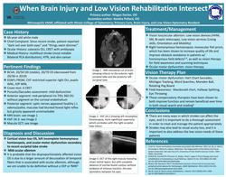 When Brain Injury and Low Vision Rehabilitation Intersect